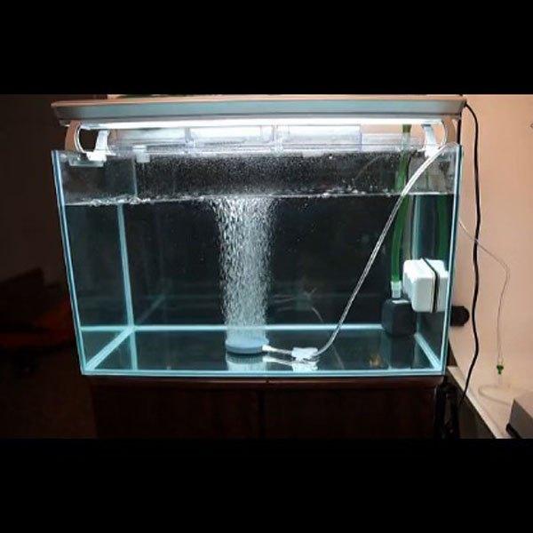 Как сделать для рыбы кислород 969
