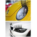 Universal Black CarLashes for VW, Honda, Lexus, Toyota, Dodge, Chevy, Acura