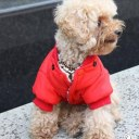 Warm Winter Small Dog Pet Clothes Apparel Outercoat Snowflake Hoodie Coat