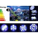 5W Blue White Beads Coral Reef Great Glare Control Pl ant Grow Light for Tank