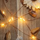 Clips String Lights 50Beads